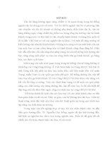 NGHIÊN CỨU GIẢI PHÁP NÂNG CAO CHẤT LƯỢNG XÂY DỰNG ĐƯỜNG LĂN, SÂN ĐỖ THUỘC KHU VỰC NHÀ GA T2 NỘI BÀI