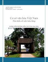 Cơ sở văn hóa Việt Nam Tìm hiểu về văn hóa làng