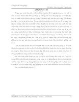 HOÀN THIỆN CÔNG TÁC KẾ TOÁN CÁC KHOẢN PHẢI THU  TẠI CÔNG TY CỔ PHẦN ĐẦU TƯ THƯƠNG MẠI VÀ DỊCH VỤ HẢI ANH