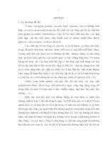 Nghiên cứu một số đặc tính sinh dược của dịch chiết từ cây Đương quy (Angelica sinensic (Oliv.) Diels)