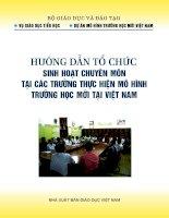 Hướng dẫn tổ chức Sinh hoạt chuyên môn tại các trường thực hiện mô hình trường học mới tại việtnam (VNEN)