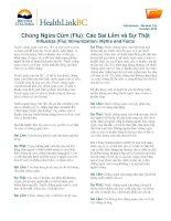 Chủng Ngừa Cúm (Flu) Các Sai Lầm và Sự Thật - Influenza (Flu) Immunization Myths and Facts