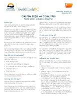 Các Sự Kiện về Cúm (Flu) - Facts about Influenza (the Flu)