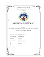 Phát triển hệ thống đại lý bán vé máy bay của Vietnam Airlines - Chi nhánh miền Bắc