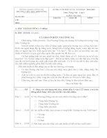 Đề kiểm tra định kì cuối học kì 2 môn Tiếng Việt lớp 4 năm 2015 trường tiểu học Điệp Nông, tỉnh Thái Bình