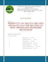 Báo cáo chuyên đề Tác hại của các lò giết mổ gia súc, gia cầm tự phát trên địa bàn thành phố Hồ Chí Minh