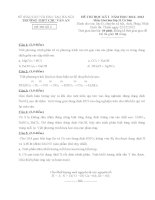 Đề thi học kì I môn Hóa lớp 11 cơ bản dành cho các lớp D (Đề 02) - THPT Chu Văn An (2012 - 2013)
