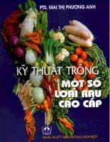 Ebook Kỹ thuật trồng một số loại rau cao cấp - PTS. Mai Thị Phương Anh