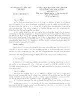 Đề thi học sinh giỏi Lý toán lớp 12 năm học 2012 - 2013 tỉnh vĩnh phúc(có đáp án)