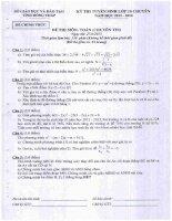 Đề thi tuyển sinh lớp 10 chuyên năm 2013 2014 môn toán tin   sở GD và đt tỉnh đồng tháp
