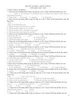 Các đề ôn tập HKII tiếng Anh lớp 10 (With key)