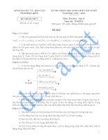 Đề thi học sinh giỏi cấp cơ sở tỉnh Điện Biên năm 2013 môn Hóa lớp 11 - Có đáp án