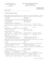 Đề thi Học kỳ I lớp 11 THPT tỉnh Đồng Nai năm 2012 - 2013 môn hóa