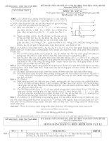 Đề thi tuyển sinh lớp 10 môn Vật lý chuyên Thái Bình năm học 2009 - 2010(có đáp án)