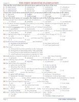 ĐỀ ÔN THI HỌC KỲ 1 MÔN TIẾNG ANH KHỐI 12 (4)