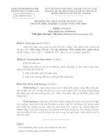 ĐỀ KIỂM TRA THỰC HÀNH về NĂNG lực CHUYÊN môn NGHIỆP vụ GIÁO VIÊN TIỂU học môn cơ bản