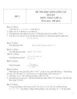 Đề thi HSG môn Toán lớp 12 Cấp huyện - Đề 2