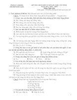 Đề thi ngữ văn lớp 9 vào 10 tham khảo sưu tầm bồi dưỡng ôn thi (30)