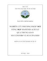 Nghiên cứu phương pháp mới tổng hợp mafenid acetat qua trung gian succinimid và succinamid