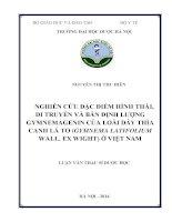 Nghiên cứu đặc điểm hình thái, di truyền và bán định lượng gymnemagenin của loài dây thìa canh lá to (gymnema latifolium wall  ex wight) ở việt nam
