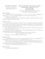 Đề thi học sinh giỏi tỉnh Ninh Bình năm 2012 môn Hóa lớp 12 (lần 1) - Vòng 1