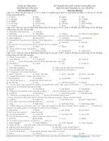 Đề thi khảo sát chất lượng môn Tiếng Anh lớp 12 số  58
