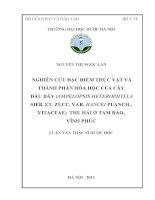 Nghiên cứu đặc điểm thực vật và thành phần hóa học của cây dầu dây ( ampelopsis heterophylla sieb et zucc var hancei planch vitaceae) thu hái ở tam đảo  vĩnh phúc