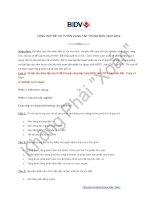 Tổng hợp đề thi tuyển tập trung BIDV 29 07 2012 (Bắc, Trung, Nam)