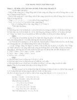 Phân loại và phương pháp giải các dạng bài tập Toán 5