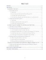 Tiểu luận kinh doanh quốc tế _ phân tích chiến lược kinh doanh quốc tế của honda