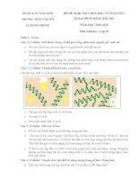ĐỀ THI (ĐỀ XUẤT) HỌC SINH GIỎI CÁC TRƯỜNG CHUYÊN VÙNG DUYÊN HẢI VÀ ĐỒNG BẰNG BẮC BỘ  NĂM 2015 MÔN SINH HỌC 10 TRƯỜNG CHUYÊN NAM ĐỊNH