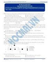 Đề thi thử môn Sinh học thầy Nguyễn Quang Anh số 5