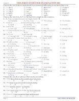 đề thi học kì 1 anh văn lớp 8, đề tham khảo số 1