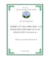 Nghiên cứu đặc điểm thực vật, thành phần hóa học của cây thạch châu (pyrenaria sp )