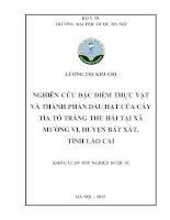 Nghiên cứu đặc điểm thực vật và thành phần dầu hạt của cây tía tô trắng thu hái tại xã mường vi, huyện bát xát, tỉnh lào cai