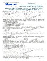Đề 4 Quy luật di truyền (Mỗi gen trên 1 NST thường)
