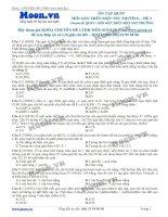 Đề 2 Quy luật di truyền (Mỗi gen trên 1 NST thường)