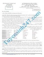 Đề thi thử THPT môn Tiếng Anh số 33