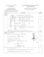 Đề thi học sinh giỏi môn vật lý lớp 10 (11)