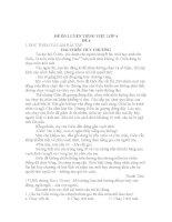 ĐỀ ôn LUYỆN TIẾNG VIỆT lớp 4, đề tham khảo số 4