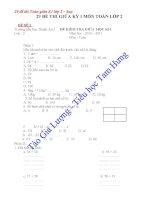 Đề thi lớp 2 - sưu tầm đề thi , kiểm tra toán, thi học sinh giỏi bồi dưỡng (89)