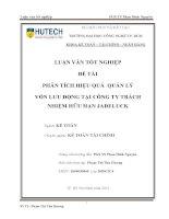 Phân tích hiệu quản lý vốn lưu động tại công ty TNHH Jadeluck