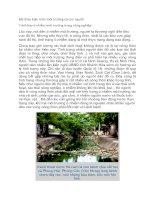 bài thảo luận môi trường và con người