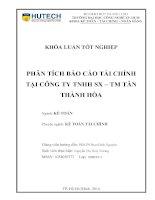 Phân tích báo cáo tài chính tại công ty TNHH SX - TM Tân Thành Hòa