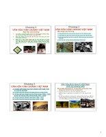 Slide bài giảng môn văn hóa kinh doanh: Chương 3: Văn hóa kinh doanh Việt Nam