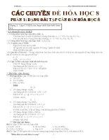 Các chuyên đề bài tập hóa học 8