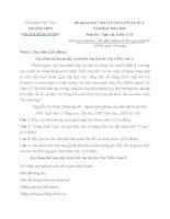 Đề KSCL lần 2 môn ngữ văn 12- Chuyên Hùng Vương phú thọ