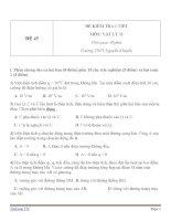 Đề kiểm tra 1 tiết Vật Lý 11 - Đề số (45)