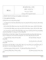 Đề kiểm tra 1 tiết Vật Lý 11 - Đề số (42)