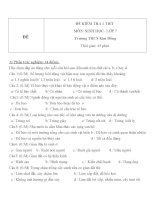 Đề kiểm tra 1 tiết lớp 7 môn Sinh học đề số 1 trường THCS Kim Đồng
